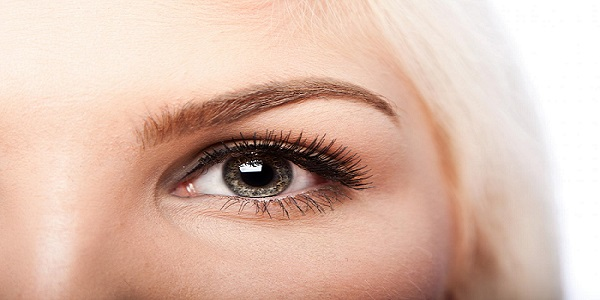 Perfectly Polished Brows